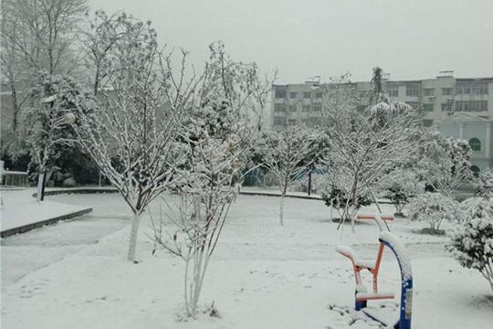 湖北襄阳随州等地迎来2019年首场降雪