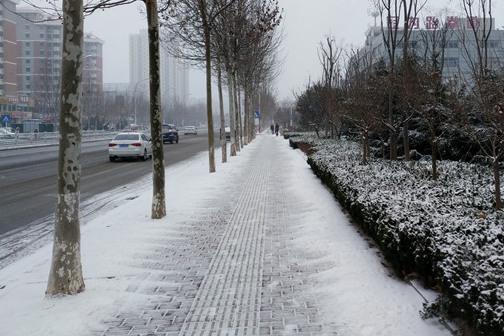 山东烟台降下小雪 对交通影响不大