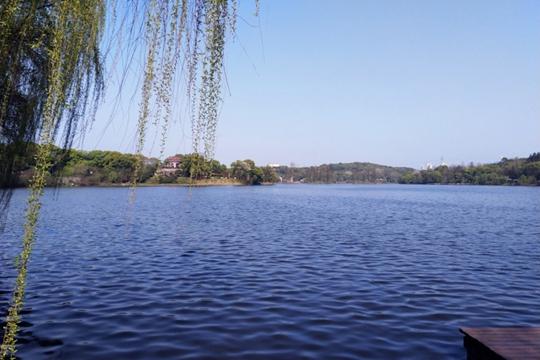 湖南衡阳:风和日丽 游玩赏花春光美
