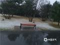 今天(9日)早上,北京门头沟、怀柔、房山等地出现四月飞雪,一派银装素裹的景象,?#36335;?#31359;?#20132;?#20102;冬季。(朱利苹 摄)