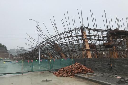 12级雷雨大风袭击浙江青田 大树被连根拔起