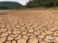 因干旱造成水位下降,河床出现大面积干裂,与不远处狭窄收缩的河道形成鲜明的对比。(摄/李玥晖)