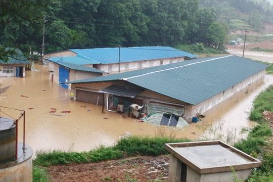 短时强降雨来袭! 贵州玉屏积水达1.5米