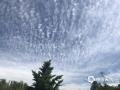 """中国天气网讯 今天(22日),北京天空湛蓝,密布鱼鳞状的云层。据中国天气网气象副首席胡啸介绍,今天北京天空中的云朵学名叫做""""透光高积云"""",云层高度在2000米以上,午后随着气温持续攀升已经逐渐消失。(图/王晓)"""