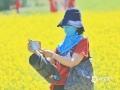 """23日上午11时,沈阳市气温逼近30℃,在长白岛和平体育公园里油菜花盛放,市民""""全副武装""""在花海里拍照。(图/韩东 文/马东雷)"""
