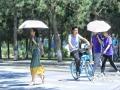 23日上午11时许,沈阳晴日当空,阳光火辣,许多市民都撑起遮阳伞出行。(图/韩东 文/马东雷)