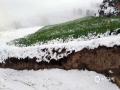 从昨天(26日)夜间开始,青海省玉树、果洛、黄南大部分高海拔地区遭遇了持续的雨夹雪天气过程。天峻、黄南南部地区遭遇了短时积雪,青海省气象台为此连续发布多次暴雪预警信号。从今晨起,青海省大部地区气温持续下降,省会西宁的最高气温只有10摄氏度左右,并下起了雨夹雪,省城周边的山顶上被薄薄的一层白雪覆盖,一夜间青山变为银山。图为海东市雪后青山变银山。(图/文 马云龙 赵海梅)