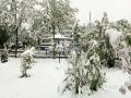 从昨天(26日)夜间开始,青海省玉树、果洛、黄南大部分高海拔地区遭遇了持续的雨夹雪天气过程。天峻、黄南南部地区遭遇了短时积雪,青海省气象台为此连续发布多次暴雪预警信号。从今晨起,青海省大部地区气温持续下降,省会西宁的最高气温只有10摄氏度左右,并下起了雨夹雪,省城周边的山顶上被薄薄的一层白雪覆盖,一夜间青山变为银山。图为海东市互助县雪后一角。(图/文 林长沛 赵海梅)