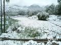 从昨天(26日)夜间开始,青海省玉树、果洛、黄南大部分高海拔地区遭遇了持续的雨夹雪天气过程。天峻、黄南南部地区遭遇了短时积雪,青海省气象台为此连续发布多次暴雪预警信号。从今晨起,青海省大部地区气温持续下降,省会西宁的最高气温只有10摄氏度左右,并下起了雨夹雪,省城周边的山顶上被薄薄的一层白雪覆盖,一夜间青山变为银山。图为海南贵德被积雪覆盖的麦田。(图/文 刘金梅 赵海梅)