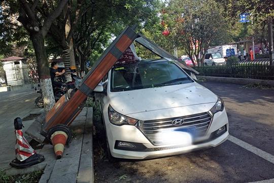 """大风突袭驻马店 伸缩门成""""麻花""""车辆被砸"""