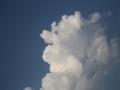 神奇!天空惊现云做的动物 惟妙惟肖