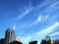 """中国天气网讯 今天(5日)清晨,哈尔滨主城区上空出现大面积的钩钩云。钩钩云学名叫做钩卷云,它看起来像个有着长长拖尾的逗号,往往呈现出白色丝缕状。""""天上钩钩云,地上雨淋淋""""。当天空出现钩钩云的时候,也意味着不久就会有雨水落下。提醒当地市民今天出门要做好防雨的准备了。(摄/吴胡荼)"""