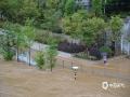 高考和端午假期期间,福建省南平市出现持续性强降水过程。图片摄于6月8日,福建南平市延平区江滨路沿岸。(图文/魏荻沁 张能胜 黄秀芳)