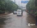 6月21日凌晨5时起,安徽省绩溪县普降大到暴雨,部分乡镇大暴雨,最大雨强出现在华阳镇,6个小时达到113毫米。暴雨造成扬之河、登源河水位暴涨,城市出现内涝,交通受阻。(图/张华)