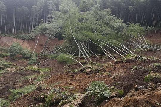 揪心!四川長寧震區持續降雨導致山體滑坡