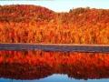 国庆长假出游 这些旅行地秋景美得刚刚好