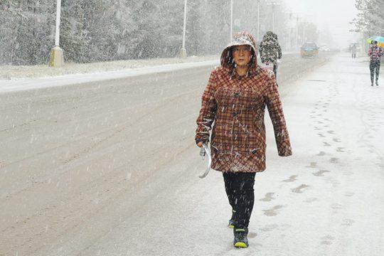 黑龙江漠河迎降雪 一片银装素裹