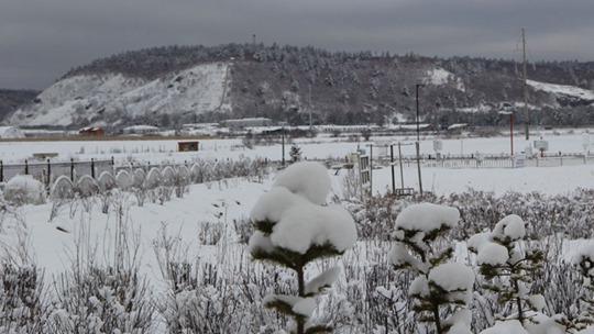 大兴安岭呼玛降暴雪 最大积雪深度超13厘米