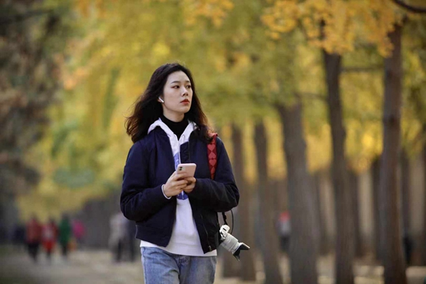 秋色染黄京城银杏大道 美女扎堆拍照忙