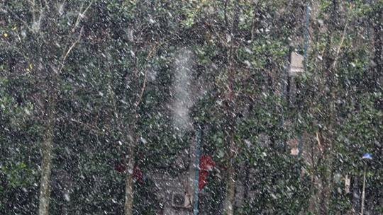 纷纷扬扬 安徽淮南洛河迎来下半年首场降雪