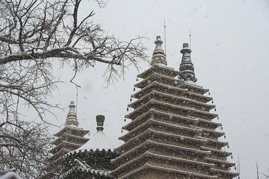大雪节气 飞雪无声天地白