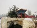 雪中太庙 细品京城别样韵味
