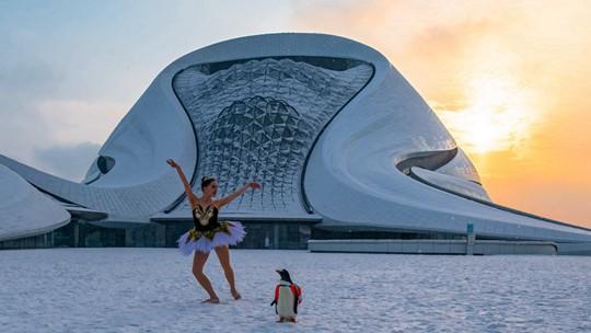 哈尔滨雪地上演天鹅湖 企鹅伴舞萌翻观众