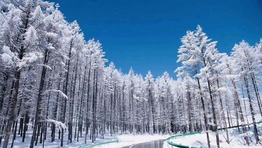 雪后河北崇禮云頂滑雪場風景如畫