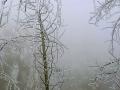 湖南武冈雨凇雾凇齐现 美轮美奂