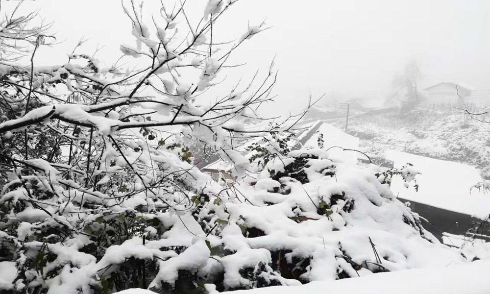 湖南古丈农历新年迎降雪 宛若童话世界