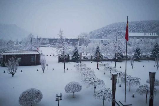 北京飘落今冬第7场雪 雪大天寒谨防感冒