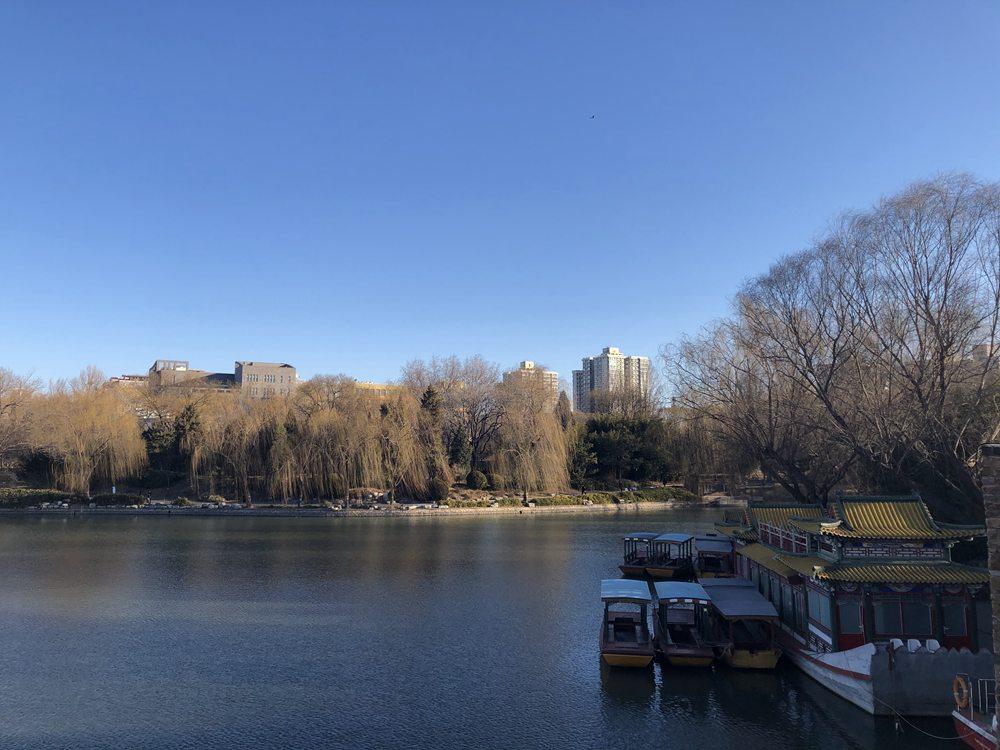 美呆!湛蓝天空下的北京紫竹院公园