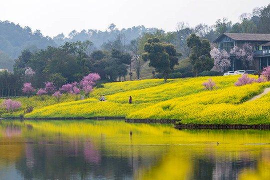 重庆天坪山呈现绝美乡村山水图