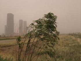 狂风呼啸!内蒙古鄂尔多斯尘土弥漫能见度变差
