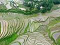 贵州福泉雨水充沛 乡村梯田美如画卷