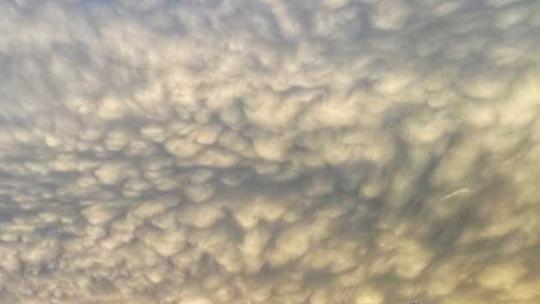 甘肅臨夏驚現乳狀云奇觀 如棉花糖高掛天空