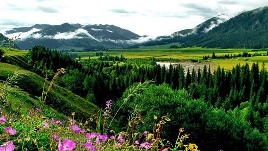 新疆唐布拉:山川河流描繪出自然美