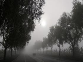 内蒙古鄂尔多斯大雾锁城 能见度降低