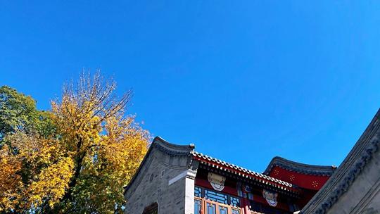 """北京现""""通透蓝"""" 美丽秋景令人心旷神怡"""