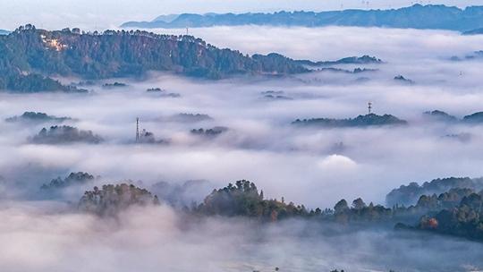 重慶南川晨霧縹緲 美如仙境
