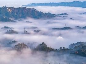 重庆南川晨雾缥缈 美如仙境