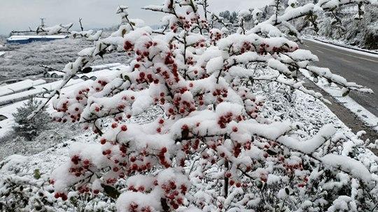 贵州多地今冬初雪悄然而至 天地浑然一体