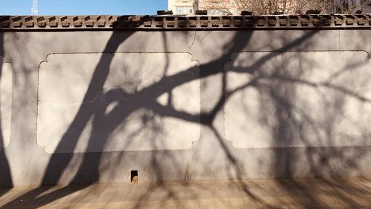 透过影子看节气 冬至日实拍京城正午最长投影