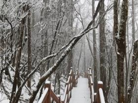 云南麗江玉龍雪山迎來降雪 變身潔白世界