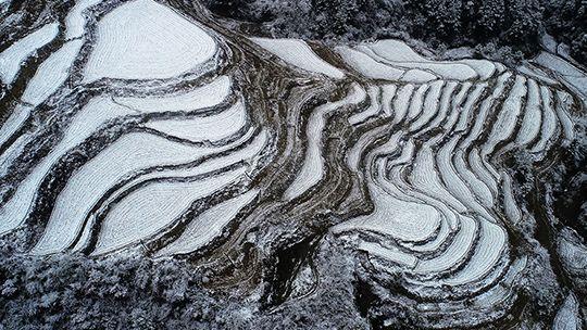 重庆黔江酉阳降雪 山舞银蛇梯田如画