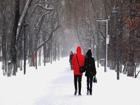 大寒遇腊八 哈尔滨雪花纷纷扬扬兆丰年