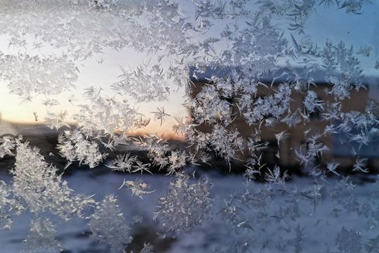 内蒙古牙克石寒意浓 冰窗花簇拥绽放