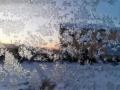 内蒙古牙克石寒意浓 成片冰窗花簇拥绽放