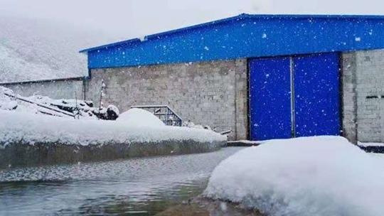 云南紅河文山出現降雪 一片銀裝素裹