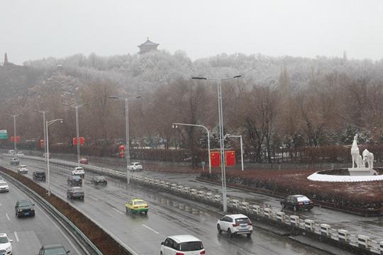 下雪了!新疆乌鲁木齐出现降雪 地面树木皆可见白